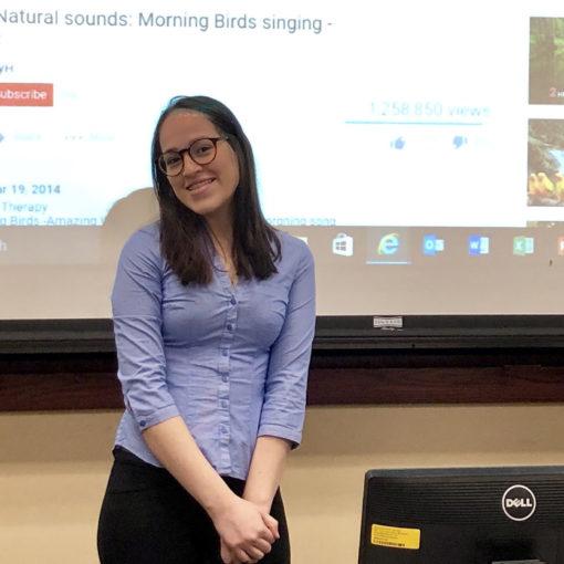 Three CLUES CSCs leading Noise vs. Sound brain teaser activities