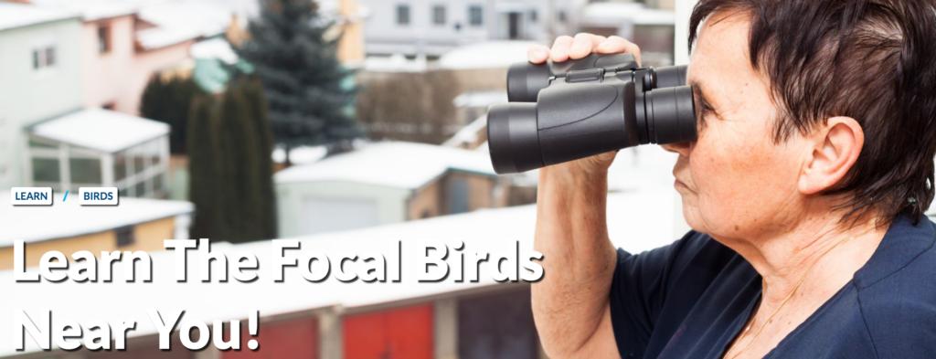 Learn the focal birds near you! (Image of a woman looking through binoculars in an urban setting.)