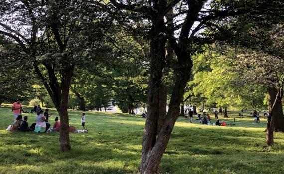 Inwood Hill Park in Manhattan